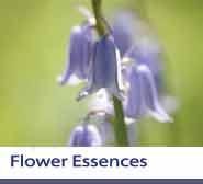 Flower Essences Section