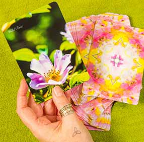 Choosing Bach Flower Remedies with the cards