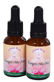 Forget Me Not Essence