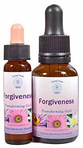 Forgive Essence