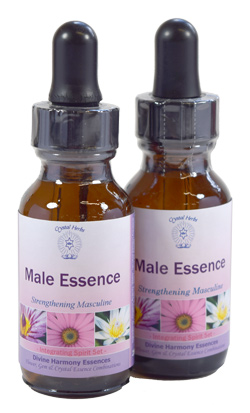 Male Essence