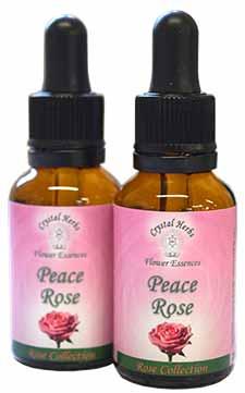 Peace Rose Flower Essence