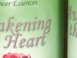 Awakening the Heart Essence