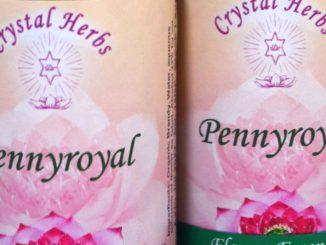 Pennyroyal Flower Essence