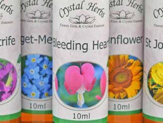 New Flower Essence Labels